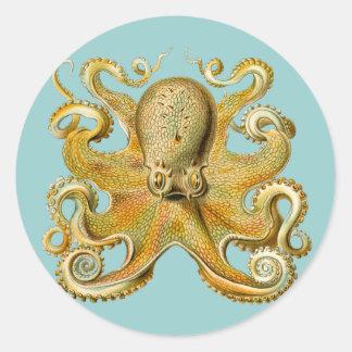 El pulpo de Ernst Haeckel Pegatina Redonda