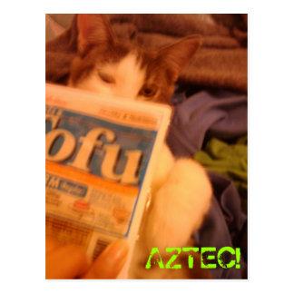 El queso de soja Kitteh Postal