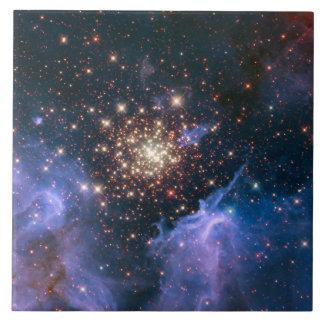 El racimo de Starburst muestra los fuegos artifici Azulejos Cerámicos