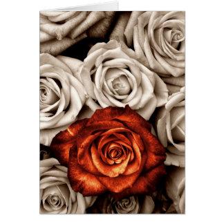 El ramo de rosas blancos y rojos esconde la tarjet tarjeta de felicitación