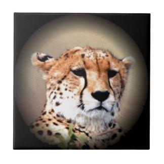 El rasgón del guepardo marca Hakunamatata Azulejo Cuadrado Pequeño