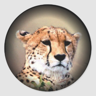 El rasgón del guepardo marca Hakunamatata.png Pegatina Redonda