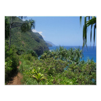 El rastro de Kalalau Póster