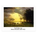 El rastro del búfalo, Albert Bierstadt Tarjeta Postal