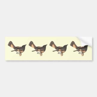 El Redstart americano(ruticilla del Muscicapa) Pegatina Para Auto