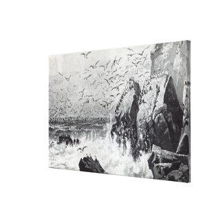 El refugio de las gaviotas impresión en lona estirada