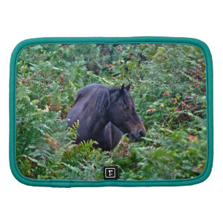 El regalo de los Animal-amantes equinos de los Cab Planificador