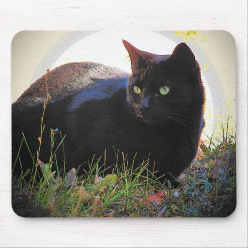 El resplandor del gato negro alfombrilla de raton