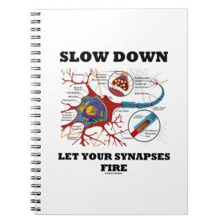 El retraso dejó su neurona/sinapsis del fuego de l libretas espirales