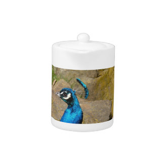 El retrato del pavo real