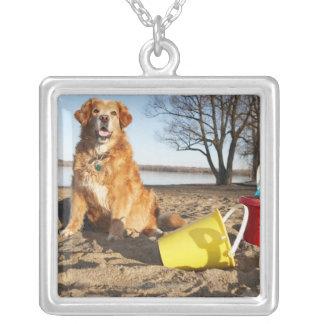 El retrato del perro en la playa con la arena colgante cuadrado