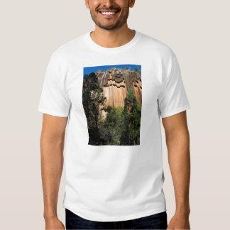 El retrato Sawn oscila el detalle, cerca de Mt Camisas