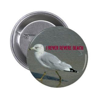 El rever I venera la playa Pins