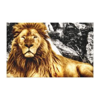 El rey del león lona envuelta para galerias
