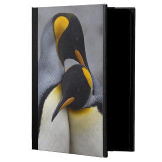 El rey pingüinos en aire del iPad del amor