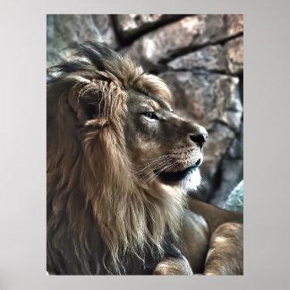 El rey posters