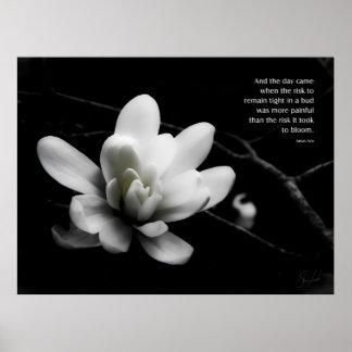El riesgo a la floración posters