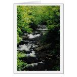 El río calvo conecta en cascada la tarjeta de feli