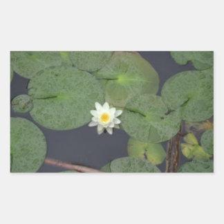 El río Charles Lotus Rectangular Pegatinas