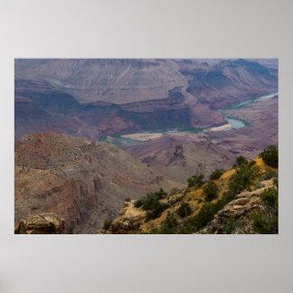 El río Colorado en el Gran Cañón 4898 Póster