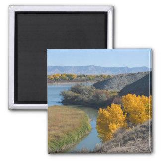 El río Colorado en otoño Imanes Para Frigoríficos