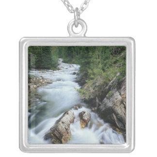 El río Crystal, bosque del Estado de Gunnison, Colgante Cuadrado