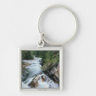 El río Crystal, bosque del Estado de Gunnison, Llavero Cuadrado Plateado