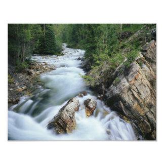 El río Crystal, bosque del Estado de Gunnison, Impresión Fotográfica