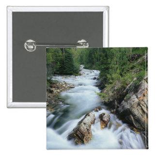 El río Crystal, bosque del Estado de Gunnison, Pin Cuadrado