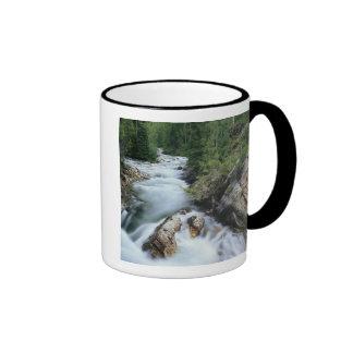 El río Crystal, bosque del Estado de Gunnison, Taza
