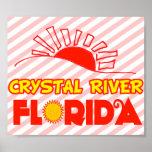 El río Crystal, la Florida Póster