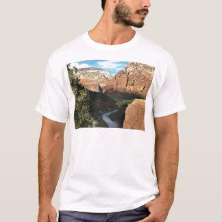 El río de la Virgen en el barranco de Zion Playera