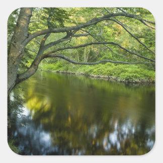 El río de Taunton en Bridgewater, 2 Pegatinas Cuadradases