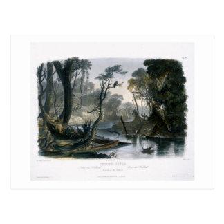 El río del atajo, rama del Wabash, platea 8 de V Postal