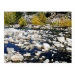 El río del caminante en otoño postal