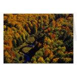 El río grande de la carpa en otoño en el puerco es tarjeta