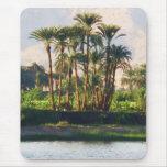 El río Nilo en Egipto, Luxor Tapete De Raton