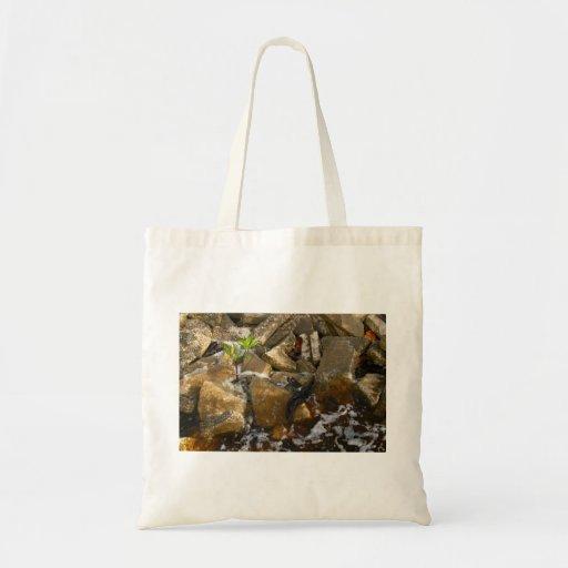 El río oscila bloques del cemento y el almácigo de bolsas