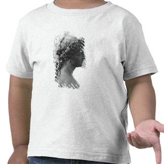 El río Saone del Parterre Camisetas