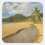 El río Tidal en la playa de la misión Pegatina Cuadrada