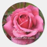 El rocío besó a los pegatinas color de rosa etiqueta redonda