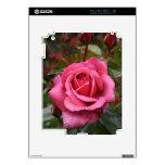 El rocío besó color de rosa rosado skin para el iPad 2