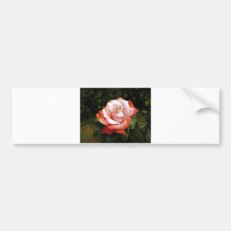 El rocío de la mañana en el rosa se descoloró pegatina de parachoque