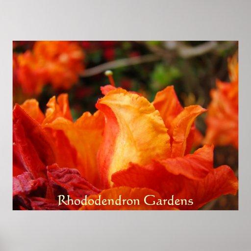 El rododendro cultiva un huerto oficina de negocio