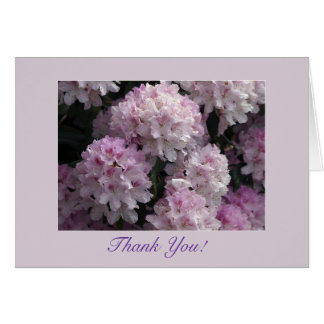 El rododendro rosado le agradece las tarjetas
