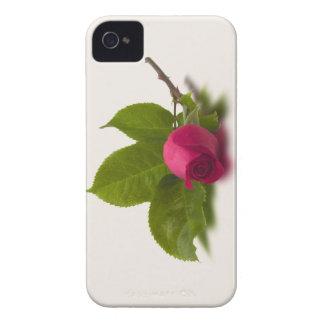 El rojo de Alec rojo del capullo de rosa Case-Mate iPhone 4 Fundas