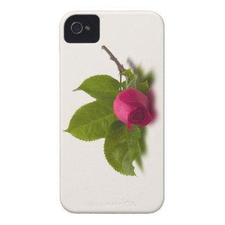El rojo de Alec rojo del capullo de rosa Case-Mate iPhone 4 Protector