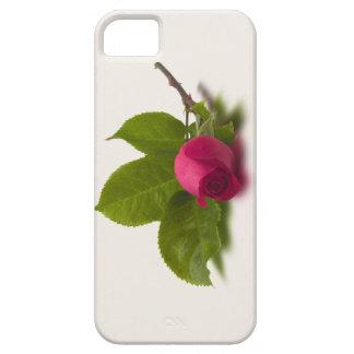 El rojo de Alec rojo del capullo de rosa Funda Para iPhone 5 Barely There