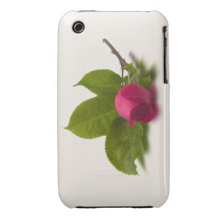 El rojo de Alec rojo del capullo de rosa iPhone 3 Case-Mate Cárcasas