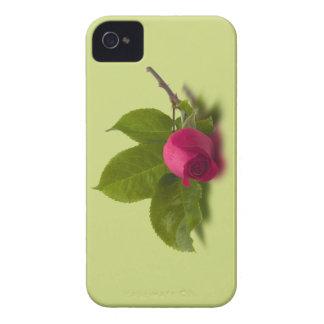 El rojo de Alec rojo del capullo de rosa iPhone 4 Coberturas
